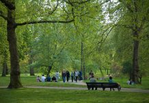 People sitting and walking in a park.