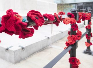 Tribute to Armed Forces and Veterans As We Remember and Reflect