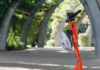 neuron e-scooter