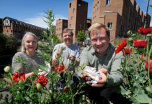 Newest Housing Development Promoting The Environment's Wellbeing