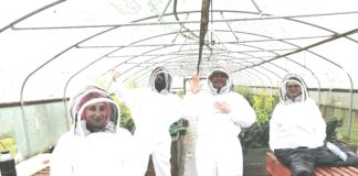 Beekeeping Community Project Launches In North Tyneside
